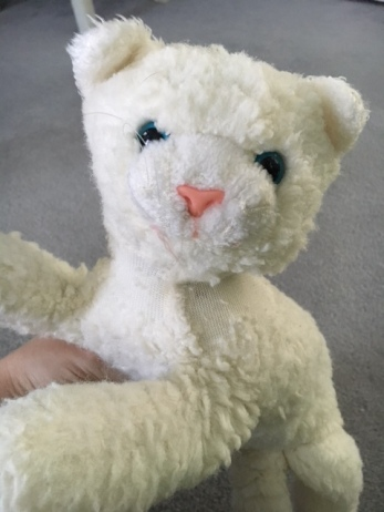stuffed animal sentimental