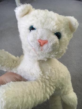 stuffed animal sentimental