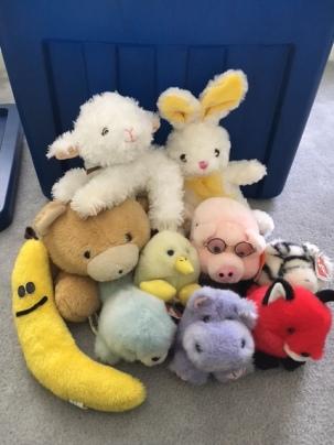 stuffed animals kept