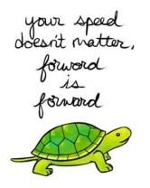 slow like turtle